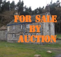 Can You Still Bag a Bargain at Auction ?