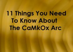 CaMkOx